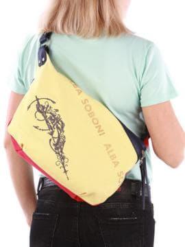 Брендовая сумка с вышивкой, модель 190394 красно-синий. Изображение товара, вид сзади.
