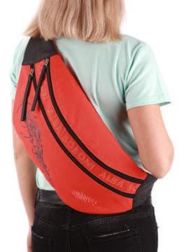 Стильная сумка через плечо с вышивкой, модель 190094 оранжевый. Изображение товара, вид сзади.