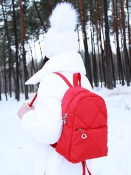 Фото товара: рюкзак 210042 красный. Фото - 2.