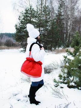 Фото товара: сумка 210012 красный. Фото - 2.